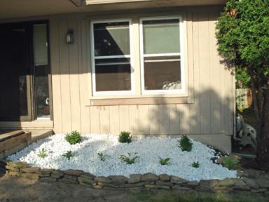 finished-shrubs.jpg
