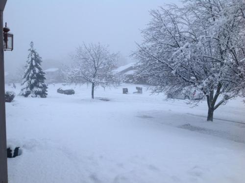 Feb snow 2