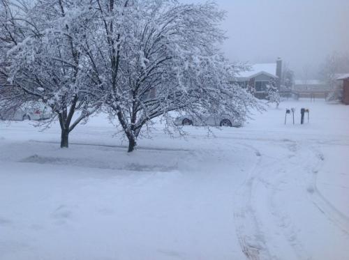 Feb snow