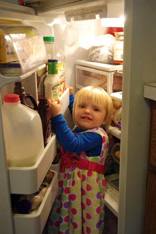 J fridge